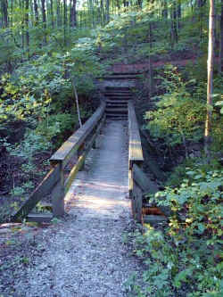 This bridge is one of many in Cincinnati Nature Center Rowe Woods. This one is along the trail that leads to the water fall over look house.